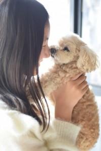 愛犬のシャンプー回数